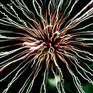 Fireworks by Michelle Crouch