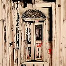 Broken Doors # 1 ( Save ME )  by John Dicandia  ( JinnDoW )