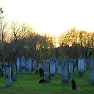Cemetary at Sunset by CMCetra