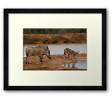 Warthog Versus Jackal Framed Print