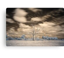 Evanescent Canvas Print