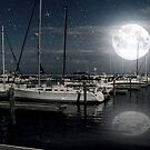 Que Bonita Luna ©  by Dawn Becker