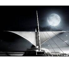 Star lit night ©  Photographic Print