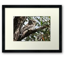 So Happy To See You! Framed Print