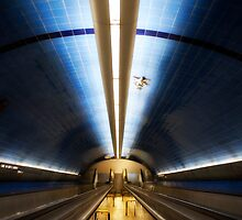 The Tube by inikphoto