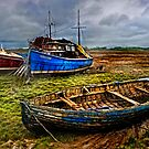 Beached by Tarrby