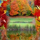Pond in October by Larry Llewellyn