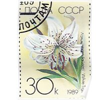 Flowers Soviet Union stamp series 1989 Лилия Уайт Тайгер USSR Poster