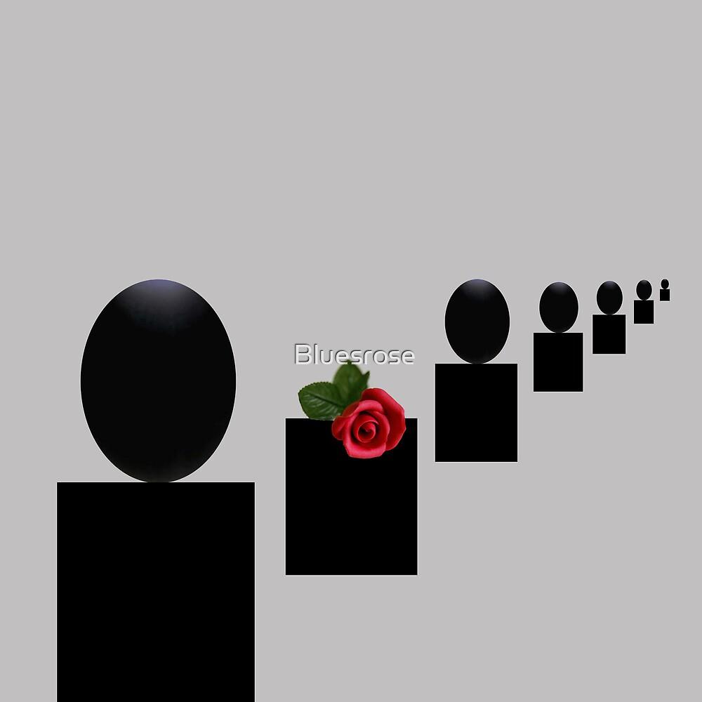 Red rose by Bluesrose