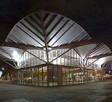 Carousel Pavilion by Scott Sheehan