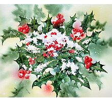 Holly and Snow Photographic Print