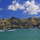 Akaroa Harbour, NZ by Stecar