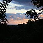 Dawn in Tallebudgera Valley by aussiebushstick