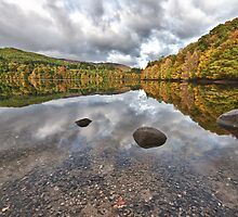 Autumn Gold - Pitlochry by tayforth