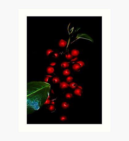 Baubles or berries? Art Print