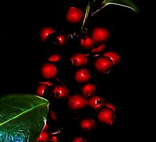 Baubles or berries? by Fisher