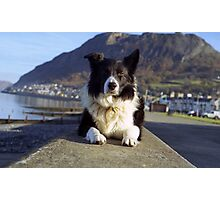 Indy on the Promenade Photographic Print