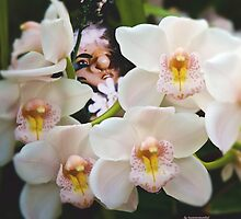 ONCE UPON A TIME ~ Orchid Troll (2) by tasmanianartist by tasmanianartist