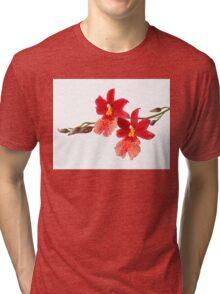 Orchid - 52 Tri-blend T-Shirt