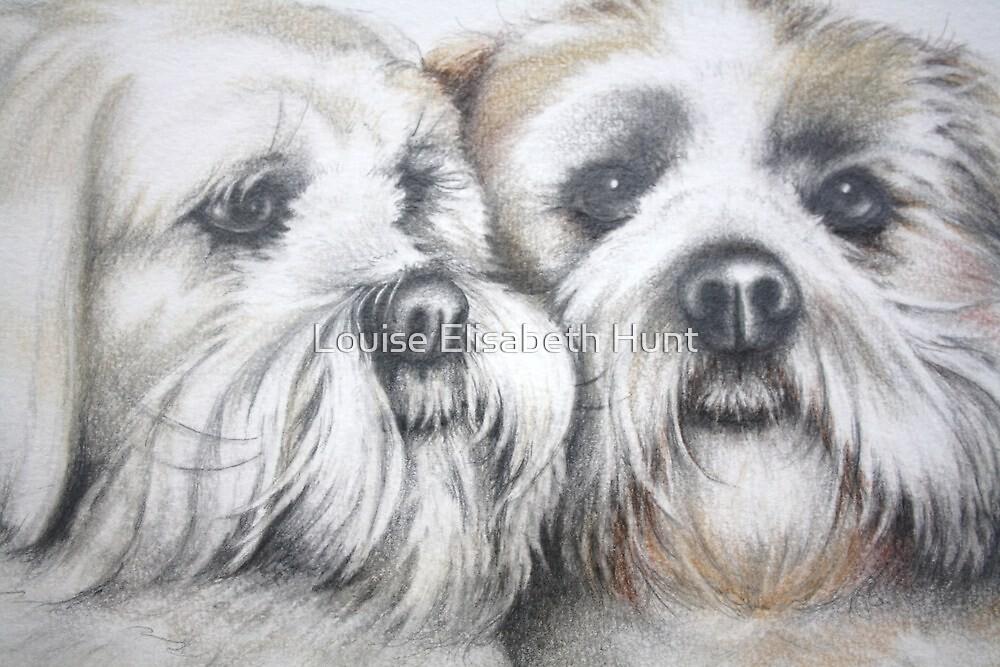 Buster & Zak. Lhasa Apso's 2010 by Louise Elisabeth Hunt