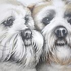 Buster & Zak. Lhasa Apso's 2010 by Louise Elisabeth Hunt