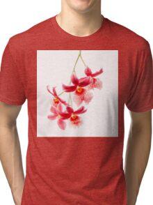 Orchid - 53 Tri-blend T-Shirt