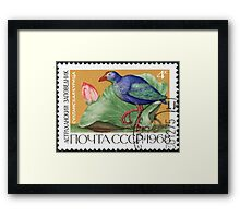 Fauna series The Soviet Union 1968 CPA 3674 stamp Purple Swamphen and Lotus Astrakhan Nature Reserve cancelled USSR Framed Print