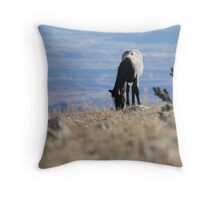 Dinner with a view Throw Pillow