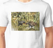 the sweetness and love of a pair of moorhens Unisex T-Shirt