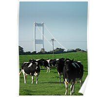Not a Severn bridge pastoral scene  Poster