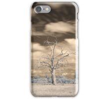 Evanescent iPhone Case/Skin