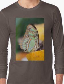 butterffly on fruit Long Sleeve T-Shirt