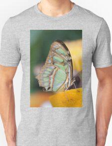 butterffly on fruit T-Shirt