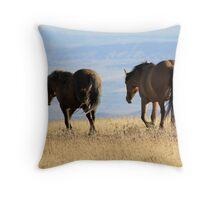 Wild Stallion and his Mare of Pryor Mountain, MT Throw Pillow