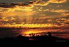 The dazzling sky II by PJS15204