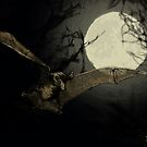 Bat Under a Full Moon by SRolfe