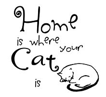 Home is where your cat is by TesniJade