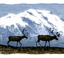 Two Caribou in the Tundra by SRolfe