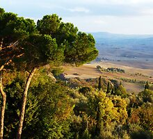 Tuscan Landscape three by artfulvistas