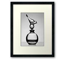 Bird & Bottle - Black and white print Framed Print