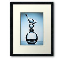 Bird & Bottle - Cyanotype print Framed Print
