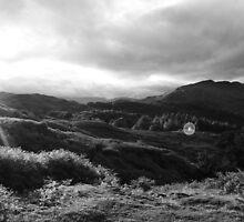 Loughrigg Fell Lake District  by John McGrath