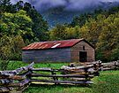The Smokies by lynell