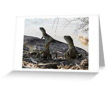 Dragon Triplets Greeting Card