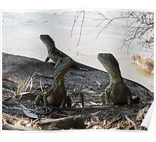 Dragon Triplets Poster