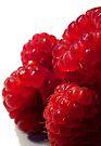 Raspberries - Blank Greeting Card by Marcia Rubin