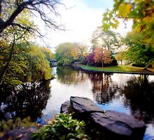 St. Stephens Green by Sam  Parsons