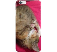 Sleeping Kitten iPhone Case/Skin