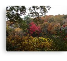 Wash Pond in the Fall Canvas Print