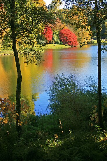 Autumn Colours, Stourhead by RedHillDigital